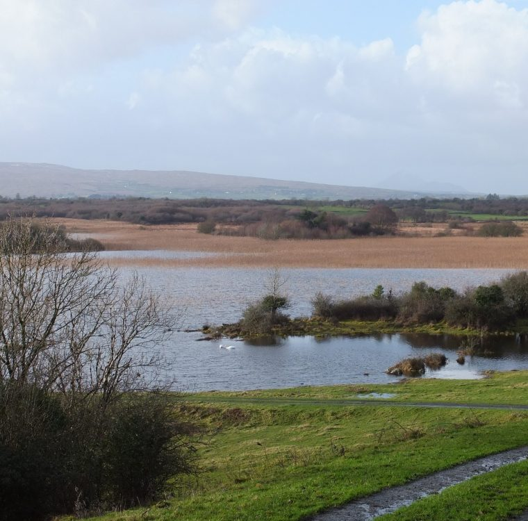 2 January 2014 – Castle Burke: very high water levels following high rainfall in December 2013. By Chris Huxley
