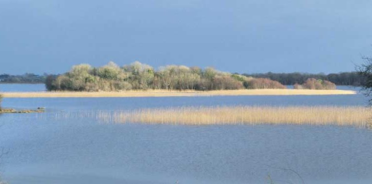Castle Island, Lough Carra by Lynda Huxley