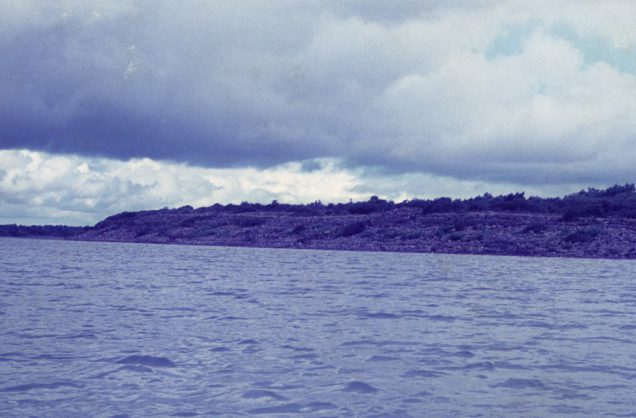 Limestone outcrop, opposite Kilkeeran shore, August 1975 by Jonathan Shackleton