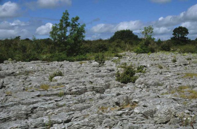 Limestone Pavement by Lynda Huxley