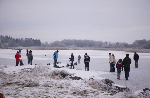 Walking on Lough Carra at Moorehall, Winter 09-10 by Patrick O'Reilly, Carra Boat Hire