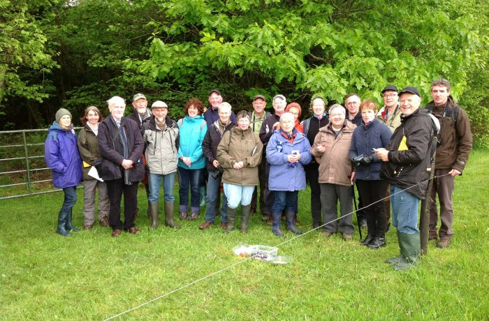 Mayo Naturalists Field Club second outing on 24th May 2014 - 4 - by Tom Quinn