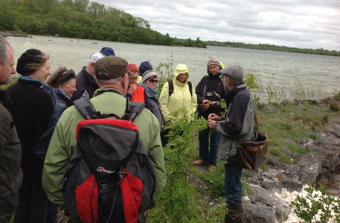 Mayo Naturalists Field Club second outing on 24th May 2014 - 5 - by Tom Quinn