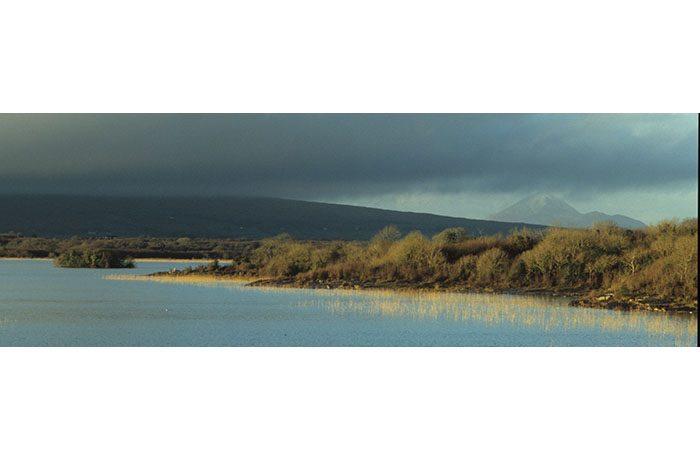 Lady Island and Croagh Patrick by Lynda Huxley