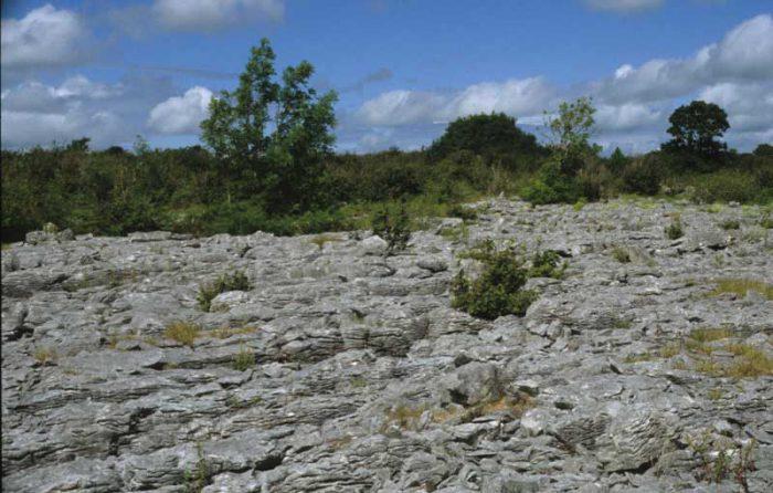 Limestone Pavement by Lynda Huxley