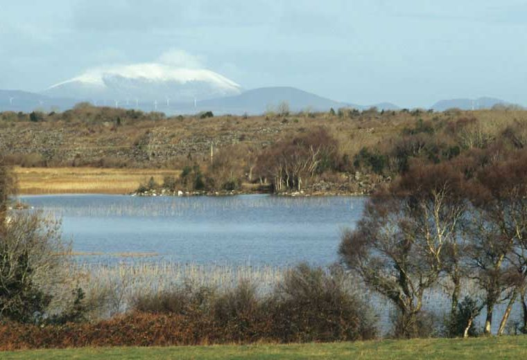 Nephin seen from Heneghan's Bay, Lough Carra by Lynda Huxley