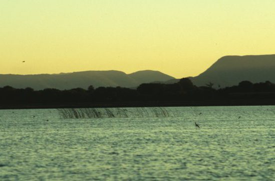 Swallows over lake, late evening by Lynda Huxley