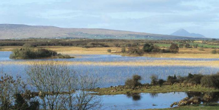 View from Castle Burke, Lough Carra by Lynda Huxley
