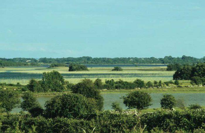 View from Kilkeeran by Lynda Huxley