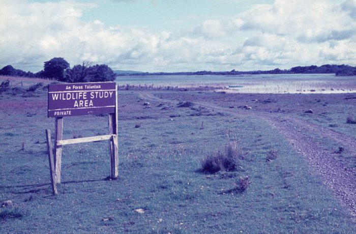 Wildlife Study Area sign, Flannelly's, August 1975 by Jonathan Shackleton