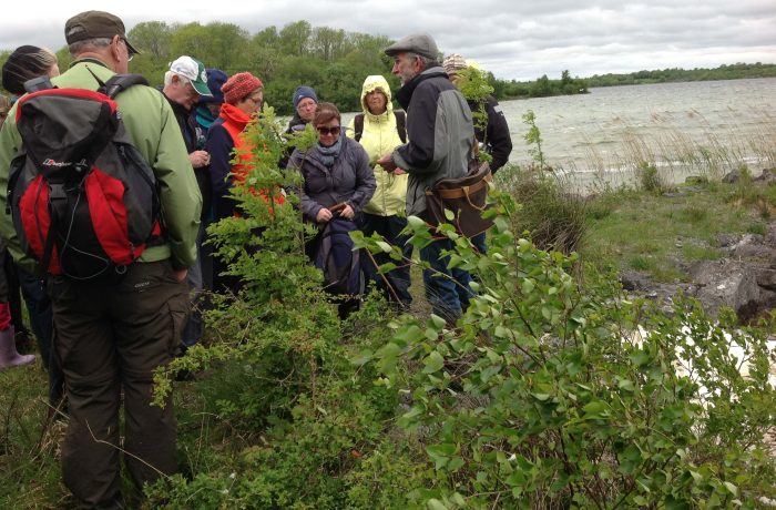 Mayo Naturalists Field Club second outing on 24th May 2014 - 1 - by Tom Quinn