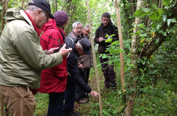 Mayo Naturalists Field Club second outing on 24th May 2014 - 2- by Tom Quinn