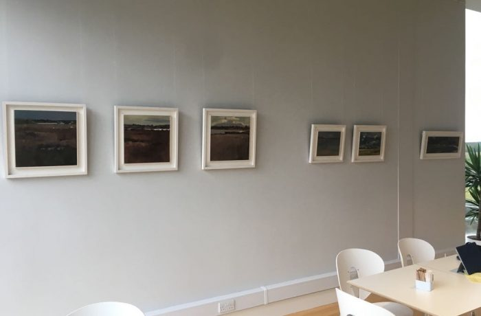 Deirdre Walsh's paintings at the Ballycroy Visitor Centre